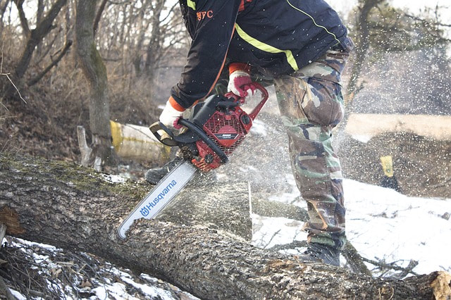 bucking up a log with a chainsaw